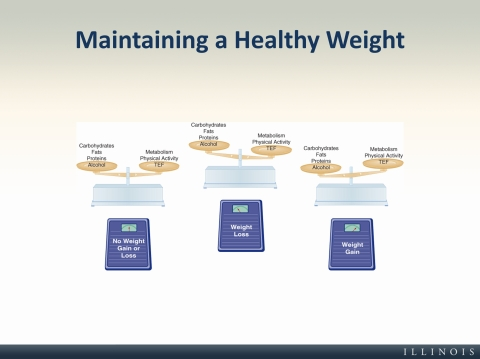 an analysis of maintaining a healthy weight Weight-loss advertising: an analysis of current trends richard l cleland walter c gross laura d koss matthew daynard karen m muoio maintaining a healthy weight.